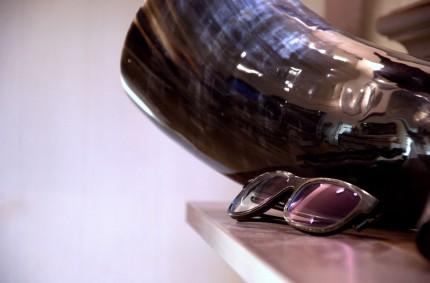 Neu bei uns : Naturhornbrillen